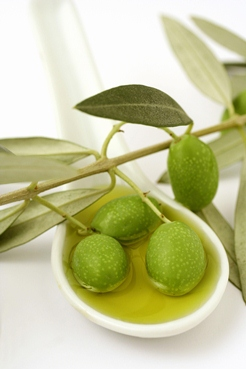 olives_in_oil